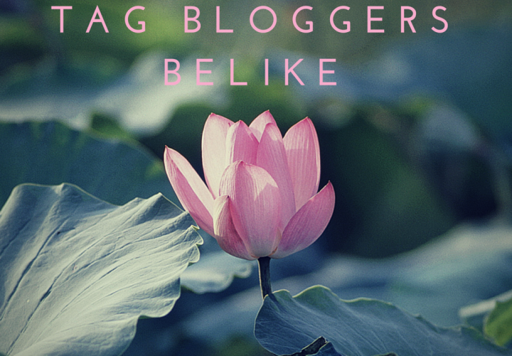 TAG | Bloggers be like – BloggersLife
