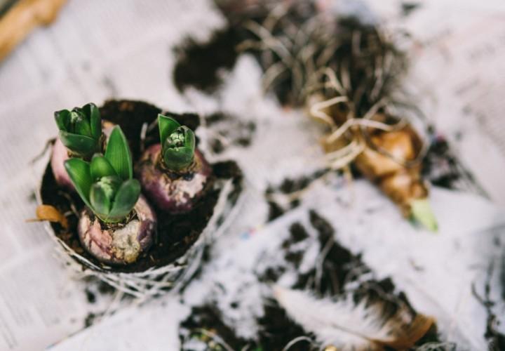 Lastminute een communie- of lentefeest organiseren?