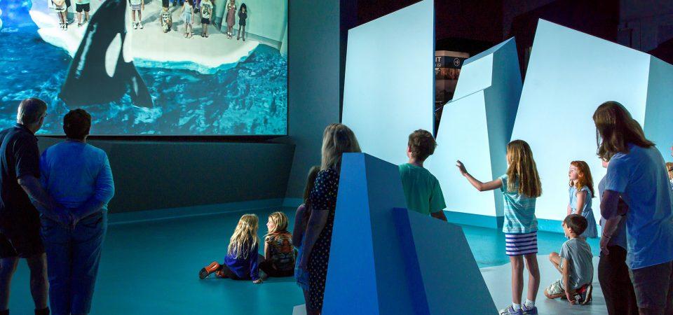 Yale 3D World Magic & Fun in Oostende