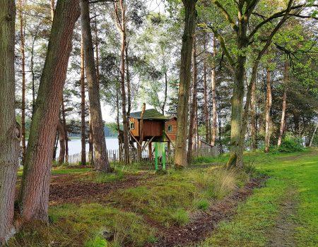 Life from De Lilse Bergen: small and slow living in de Boomhut met een fantastisch uitzicht!