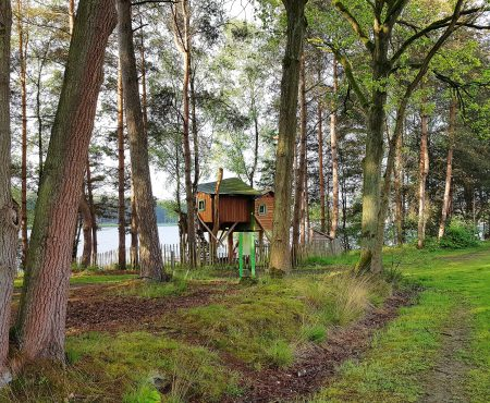 Life from De Lilse Bergen: small and slow living in de Boomhut met een fantastisch uitzicht!