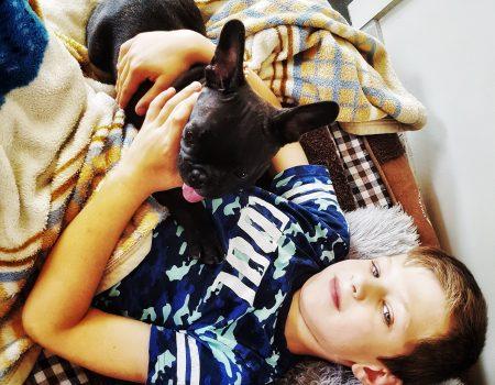 To dog or not to dog: over het (niet) hebben van een huisdier met kinderen