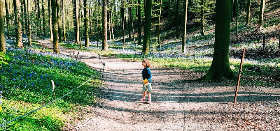Vakantie met kinderen: de voordelen van een vakantiehuis op een rijtje